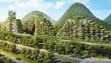 Liuzhou Ciudad Bosque